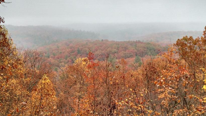 Blue Ridge fall foliage.jpg